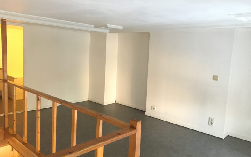 Appartement de Type 1 en Duplex